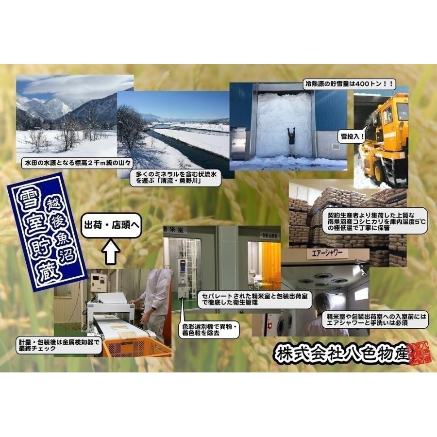 新米 雪室貯蔵米 令和3年産 南魚沼産コシヒカリ 塩沢産100%特別栽培米と慣行栽培米の5kg計10kgです。送料無料(本州) |syugyokunoippin|07