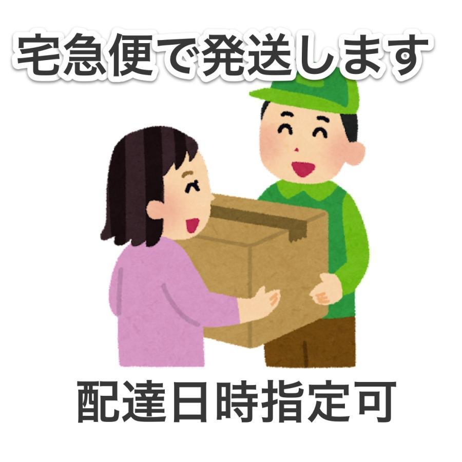 重箱2つセット syumatsu-yoho 03