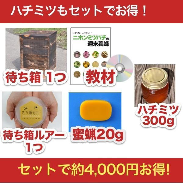 待ち箱ルアーで始める!週末養蜂スタートキット + 日本蜜蜂のハチミツ300g