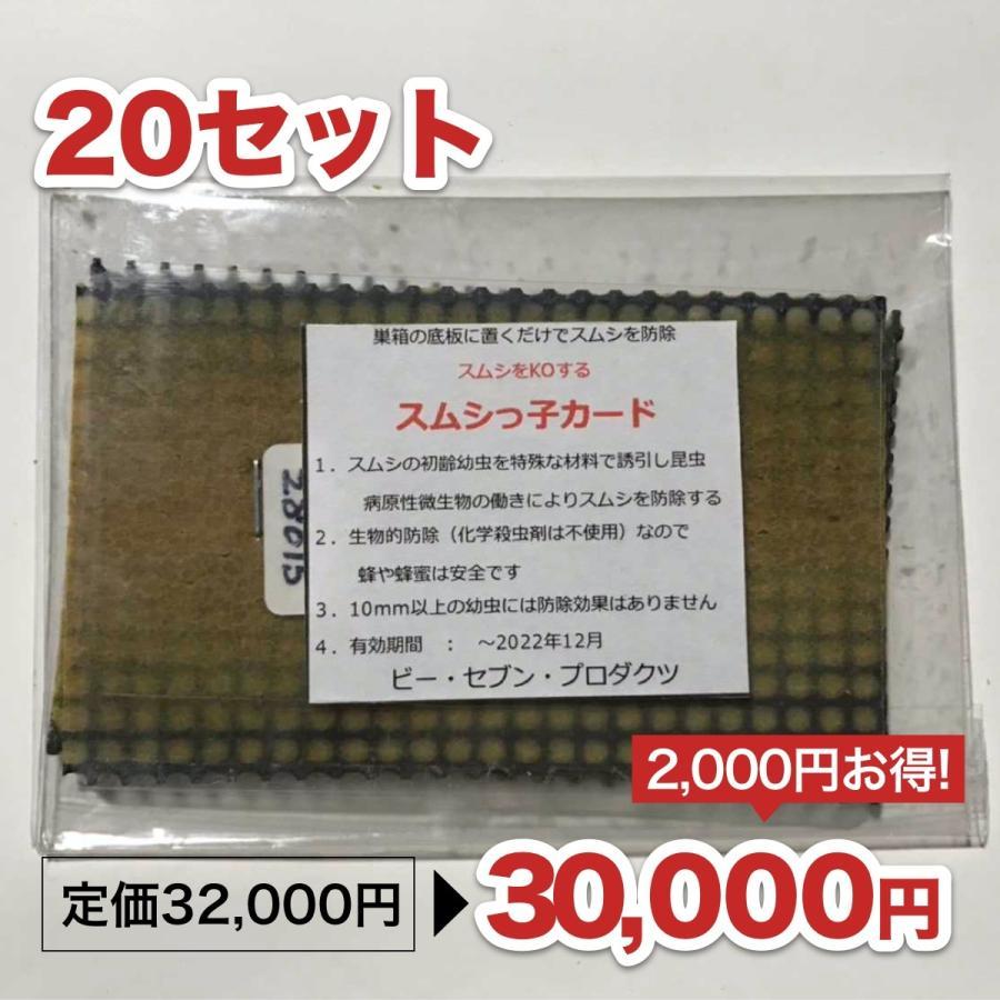 スムシっ子カード 20セット