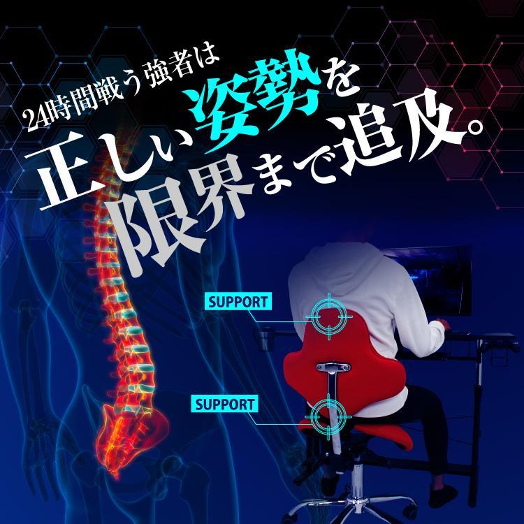 STRASSE GAMING LAB 腰痛対策チェア 椅子 ゲーミングチェア オフィスチェア パソコンチェア [ハンコン ストラッセ]|syumicolle|03