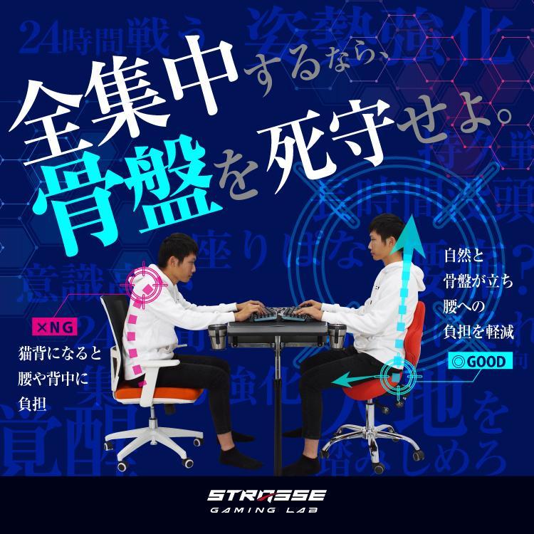 STRASSE GAMING LAB 腰痛対策チェア 椅子 ゲーミングチェア オフィスチェア パソコンチェア [ハンコン ストラッセ]|syumicolle|04