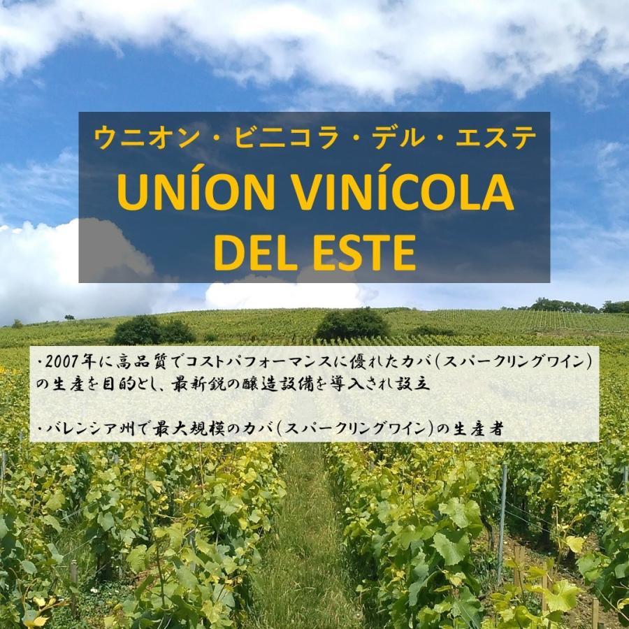\20%OFFクーポン有/ スパークリングワイン cava カバ (辛口) 『ベガ・メディエン ブリュット・ロゼ NV』 父の日 2021 プレゼント ギフト おすすめ syungen-sakaya 09