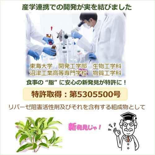 サラシア茶 スリランカ産 神の恵み茶 さわやか美味しいコタラヒムの葉 3g×30包 お得な3袋 サラシアレティキュラータ 血糖値 中性脂肪 便秘 腸活 免疫力|t-herb|08