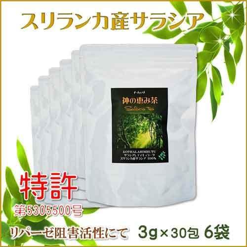 サラシア茶 スリランカ産 神の恵み茶 さわやか美味しいコタラヒムの葉 3g×30包 お得な6袋 サラシアレティキュラータ 血糖値 中性脂肪 便秘 腸活 免疫力 t-herb