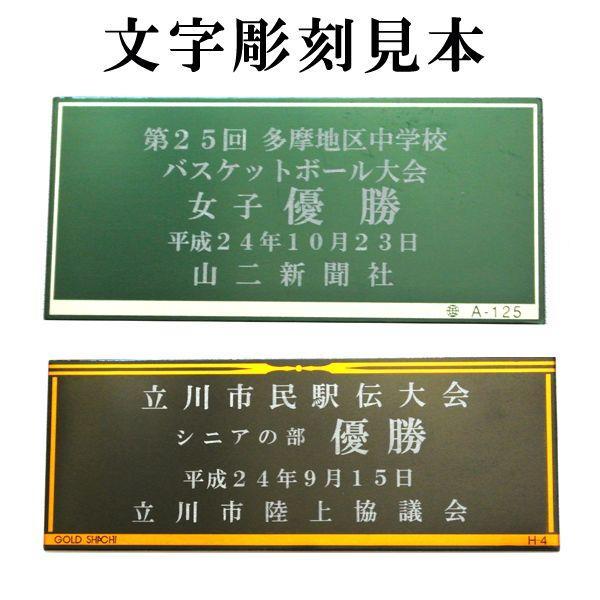 カップNO-2157A(55cm)MSH 96 カップ?コンペ用品?送料無料 t-kisho 02