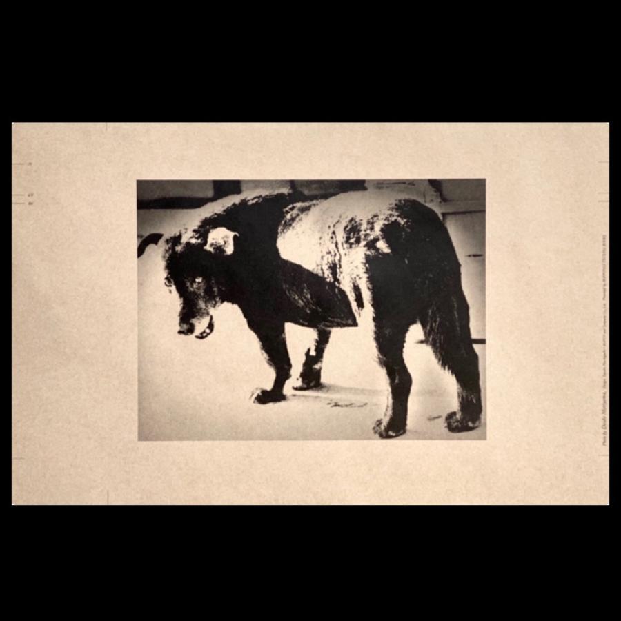 【限定特典&サイン入】森山大道の東京 ongoing 展覧会図録 東京都写真美術館 Moriyama Daido's Tokyo: ongoing t-tokyoroppongi 05