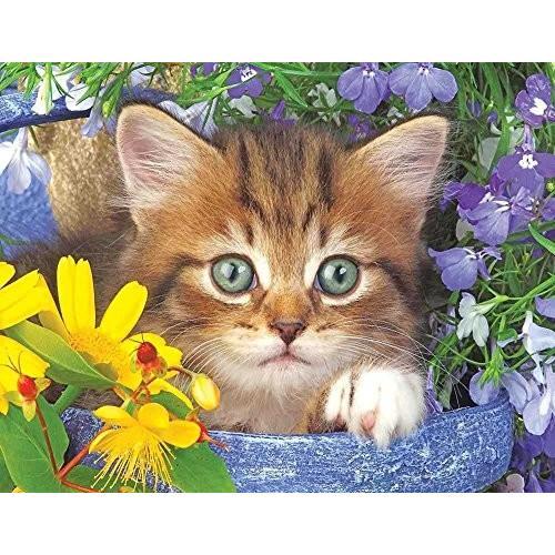 Springbok ガーデン Helper ジグソーパズル パズル (36-Piece)海外取寄せ品