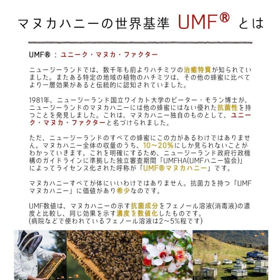 キウィ・マヌカハニー Kiwi Manuka Honey UMF+10 250g 2個セット 世界初の医療用マヌカハニー 送料無料|tabeluca|03