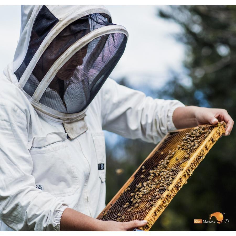 キウィ・マヌカハニー Kiwi Manuka Honey UMF+10 250g 2個セット 世界初の医療用マヌカハニー 送料無料|tabeluca|05