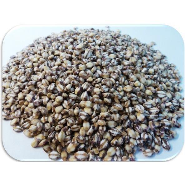豆力 こだわりの国産もち麦 1kg 【もちむぎ、大麦、裸麦】|tabemon-dikara|02