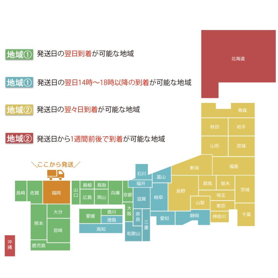 スーツケース 機内持ち込み 拡張 Sサイズ ブレーキ サスペンション 静音8輪 コインロッカー 小型 軽量 機内持込 キャリーケース おしゃれ おすすめ 国内 旅行 tabi 17