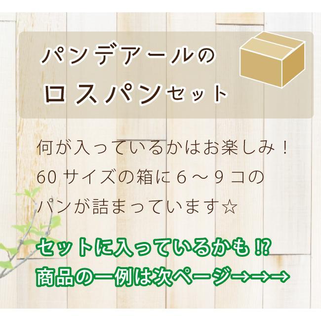 ロスパン セット パンデアール 冷凍パン 宅配パン おすすめパン tabitabi 03