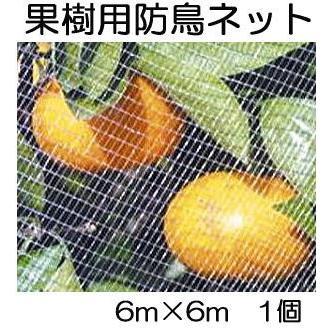 キンボシ 果樹すっぽり防鳥ネット 6m×6m 防鳥網 7679 (zmP1)|tackey