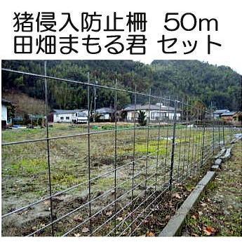 猪侵入防止柵 田畑まもる君 50mセット 線径5mm 亜鉛メッキ 高1.2m×幅2.0m 支柱、結束線付き