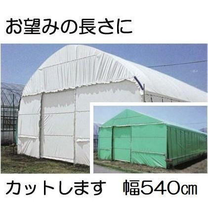 農PO ハクリョク 厚み0.15mm幅540cm長さ30m重さ約24.8kg 両面仕様(白・緑) 農業用格納庫 倉庫 三菱ケミカルアグリドーム