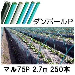 ダンポールP マル75 ×2.7m 緑 トンネル幅140cm 徳用 250本 [トンネル支柱 アーチ支柱]