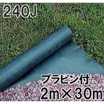 デュポン グリーンビスタ プロ240J 2m×30m 厚さ0.64mm プラピン100本付
