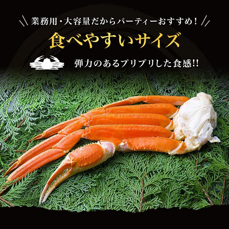 カニ ズワイガニ 足 特大 5kg カニ 食べ放題 5kg セット かに カニ 蟹 脚 ずわいがに ズワイガニしゃぶしゃぶ用 ボイルズワイガニ taino-tai 03