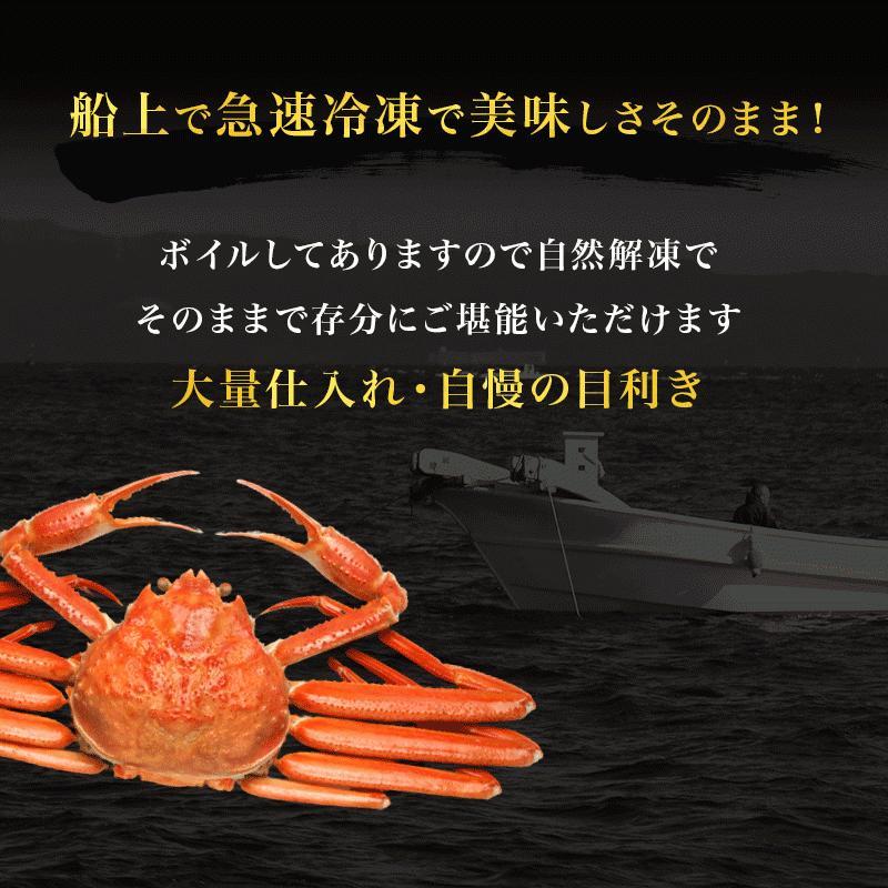 カニ ズワイガニ 足 特大 5kg カニ 食べ放題 5kg セット かに カニ 蟹 脚 ずわいがに ズワイガニしゃぶしゃぶ用 ボイルズワイガニ taino-tai 05