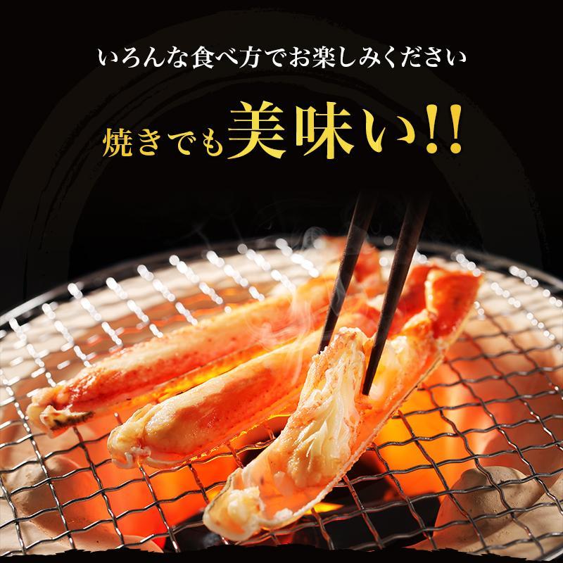 カニ ズワイガニ 足 特大 5kg カニ 食べ放題 5kg セット かに カニ 蟹 脚 ずわいがに ズワイガニしゃぶしゃぶ用 ボイルズワイガニ taino-tai 07