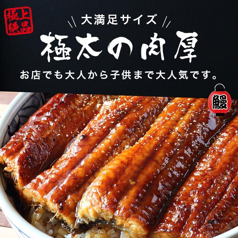 超特大 うなぎ 蒲焼き メガサイズ 360g-400g ×2本 ウナギ 鰻 ギフト taino-tai 02