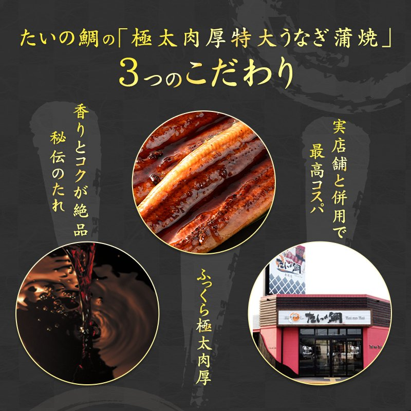 超特大 うなぎ 蒲焼き メガサイズ 360g-400g ×2本 ウナギ 鰻 ギフト taino-tai 03