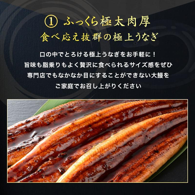 超特大 うなぎ 蒲焼き メガサイズ 360g-400g ×2本 ウナギ 鰻 ギフト taino-tai 04