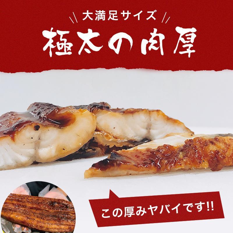 超特大 うなぎ 蒲焼き メガサイズ 360g-400g ×2本 ウナギ 鰻 ギフト taino-tai 09