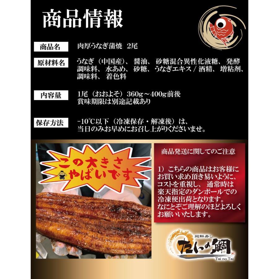 超特大 うなぎ 蒲焼き メガサイズ 360g-400g ×2本 ウナギ 鰻 ギフト taino-tai 10