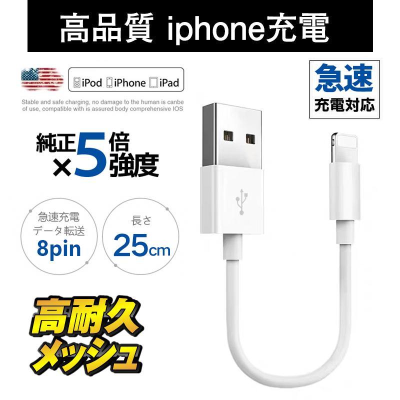 充電 ケーブル ipod