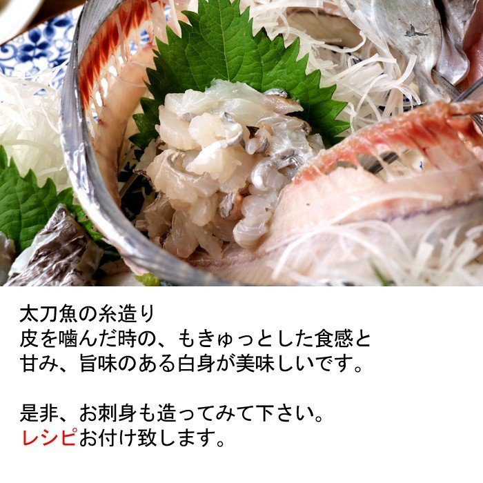 方 切り 太刀魚 刺身
