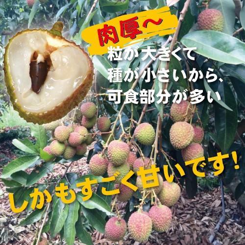 ドラゴンライチ3kg(玉荷包)台湾産 期間限定 taiwanbussankan 04