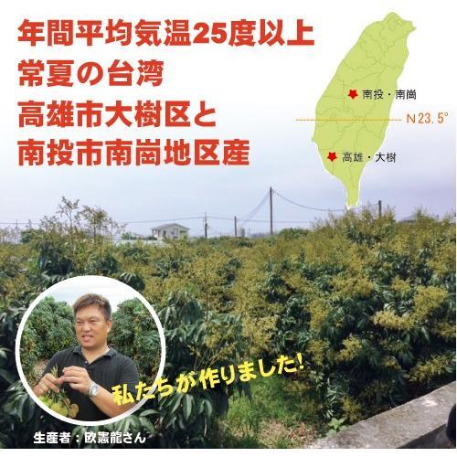 ドラゴンライチ3kg(玉荷包)台湾産 期間限定 taiwanbussankan 05