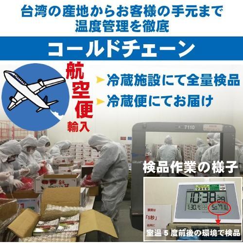 ドラゴンライチ3kg(玉荷包)台湾産 期間限定 taiwanbussankan 07