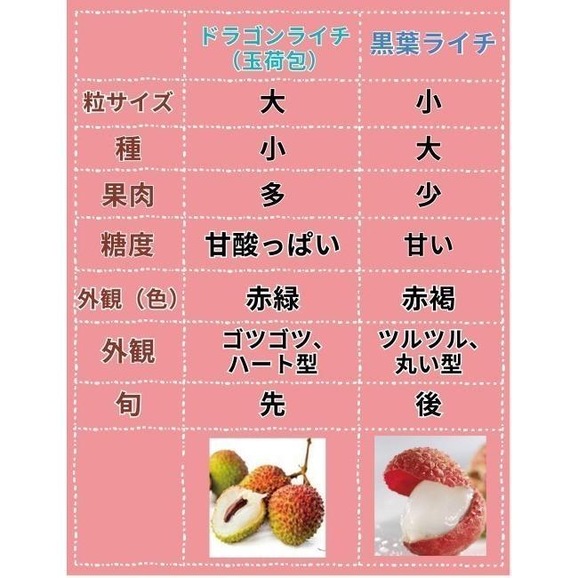 ドラゴンライチ3kg(玉荷包)台湾産 期間限定 taiwanbussankan 10