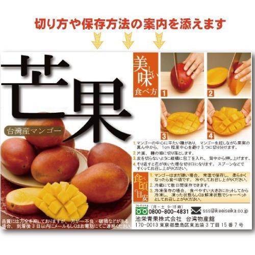 お中元 御中元 ギフト アップルマンゴー2.5kg 台湾産 期間限定 送料無料 taiwanbussankan 12