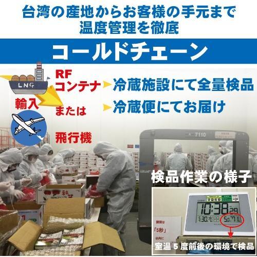 お中元 御中元 ギフト アップルマンゴー3玉 台湾産 期間限定 送料無料|taiwanbussankan|09