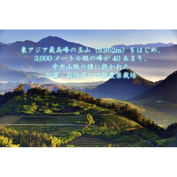 凍頂烏龍茶 無農薬 高山茶 台湾南投県 taiwanbussankan 02