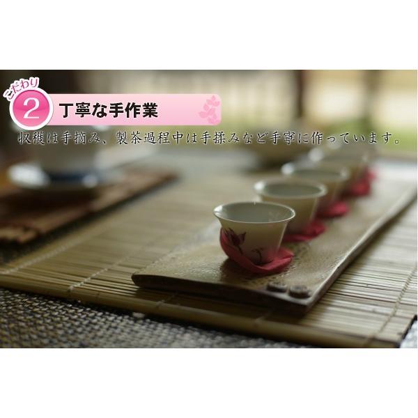 凍頂烏龍茶 無農薬 高山茶 台湾南投県 taiwanbussankan 05
