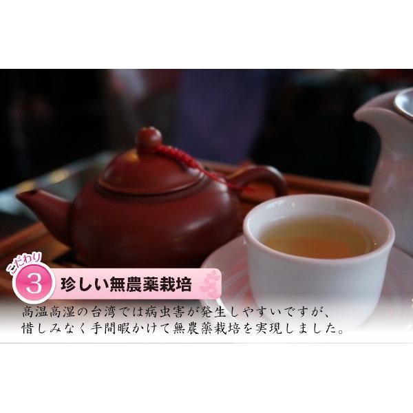 凍頂烏龍茶 無農薬 高山茶 台湾南投県 taiwanbussankan 06
