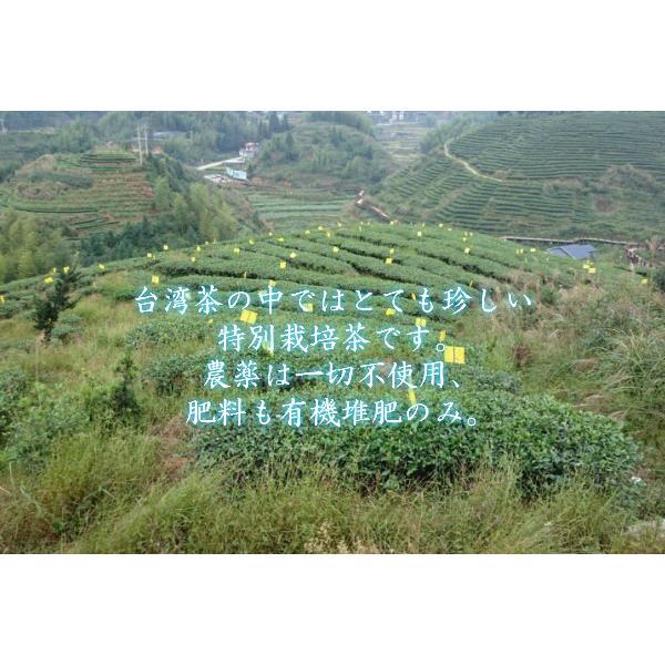 東方美人茶 無農薬 高山茶 台湾苗栗県 taiwanbussankan 03