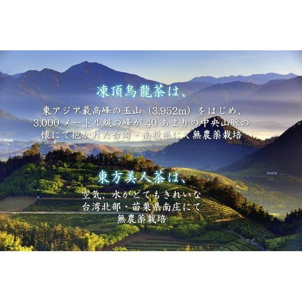 凍頂烏龍茶 東方美人茶 台湾茶ギフトセット 送料込 taiwanbussankan 04