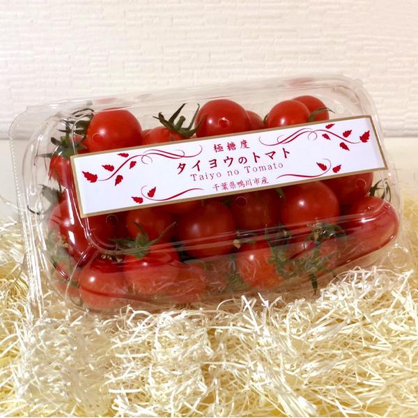 【川の手荒川まつりセット】フルーツトマト 産地直送 千葉県産 お取り寄せ タイヨウのトマトべにすずめ300g+昭和のトマトジャム1個トマトジュース1本セット taiyo-no-tomato 04