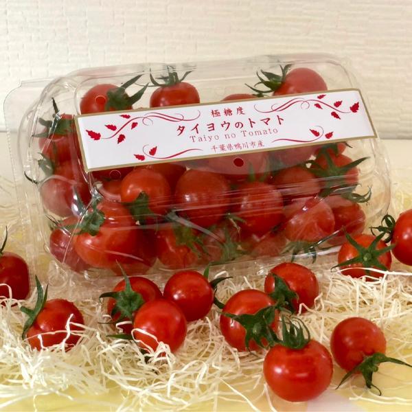 【川の手荒川まつりセット】フルーツトマト 産地直送 千葉県産 お取り寄せ タイヨウのトマトべにすずめ300g+昭和のトマトジャム1個トマトジュース1本セット taiyo-no-tomato 05