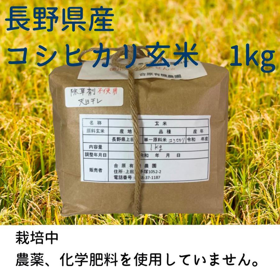 長野県上田市産 合原有機栽培農園 玄米 コシヒカリ 1kg|taiyotaiyo