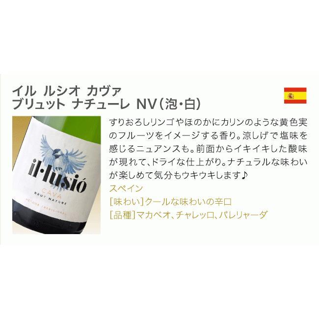 ワインセット 送料無料 第26弾 辛口 スパークリングワイン 気軽に楽しめる 得々泡 5本 セット(追加7本同梱可)|takamura|04