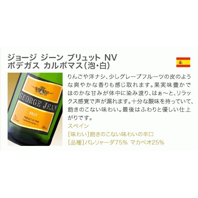 ワインセット 送料無料 第26弾 辛口 スパークリングワイン 気軽に楽しめる 得々泡 5本 セット(追加7本同梱可)|takamura|06