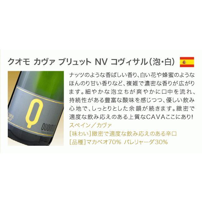 ワインセット 送料無料 第26弾 辛口 スパークリングワイン 気軽に楽しめる 得々泡 5本 セット(追加7本同梱可)|takamura|07