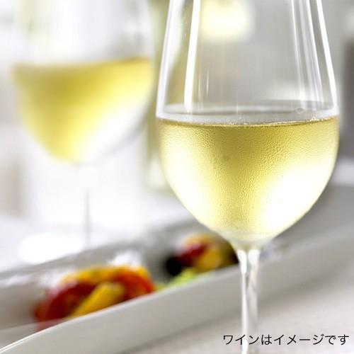フランス 辛口 白ワイン シャブリ  [2018]  ドメーヌ デ マロニエール( 白ワイン )[J] takamura 03